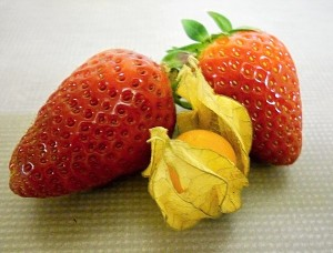 Strawberries and Physalis