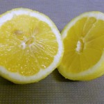sb000248-fresh-lemon (5)